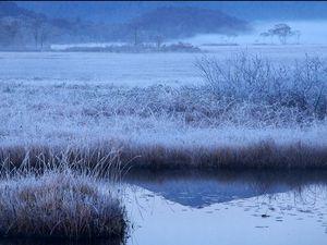 尾瀬の冬.jpg
